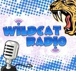Mac Mini for Wildcat Podcat Radio