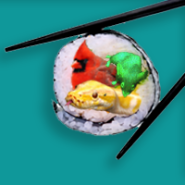 Science Sushi classroom drive 2011