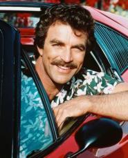 Joe's Magnum PI Mustache